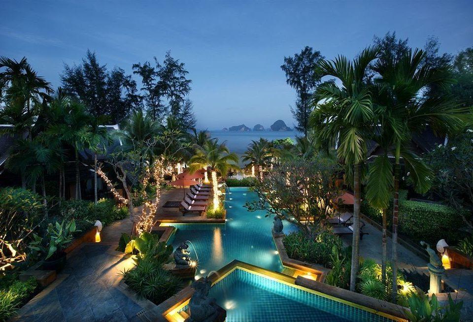 tree Resort property resort town swimming pool Jungle Villa mansion plant
