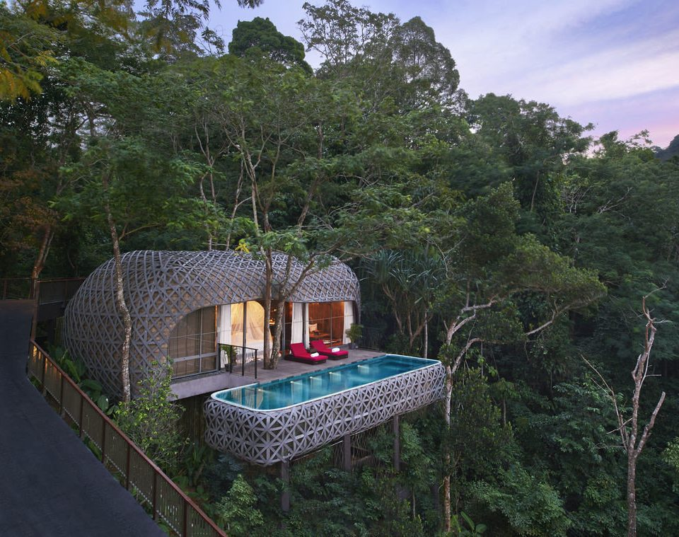 tree Jungle Resort Villa