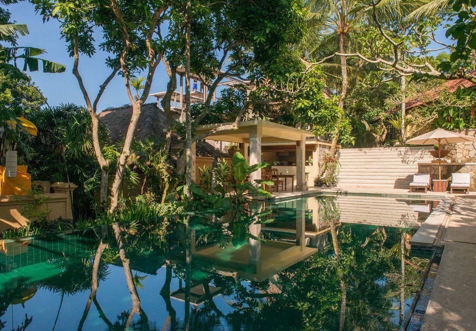 tree property Resort swimming pool Jungle home mansion Villa Water park backyard palm shade
