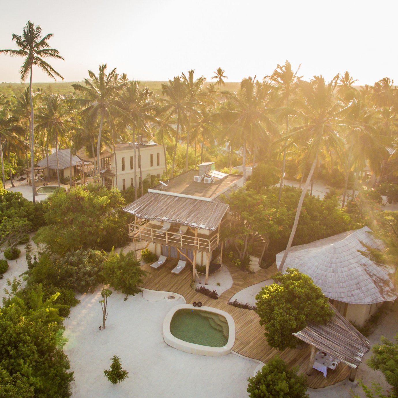 tree sky ecosystem rural area agriculture Resort Village mansion Jungle plant