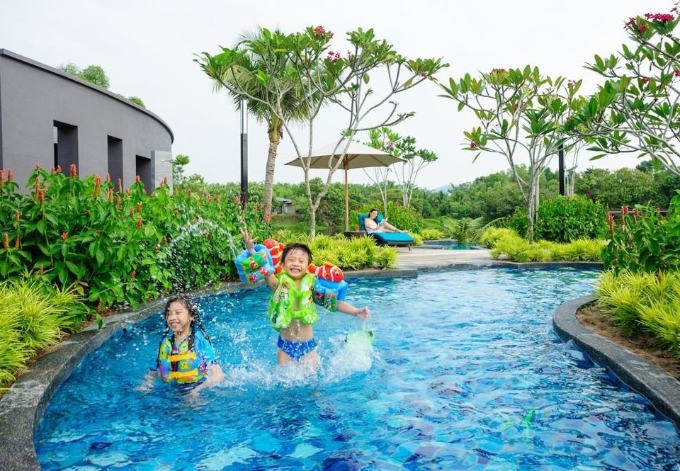 tree water leisure swimming pool child little Resort water sport swimming Water park backyard Jungle blue