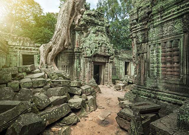 tree Ruins stone archaeological site building old ancient history park screenshot place of worship temple Jungle mansion shrine