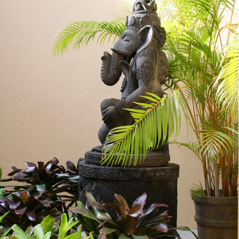 Spa Wellness plant reptile green botany art sculpture flower Jungle statue