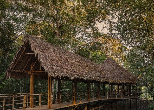 tree habitat building hut thatching house cottage rural area wooden Village Jungle shack roof
