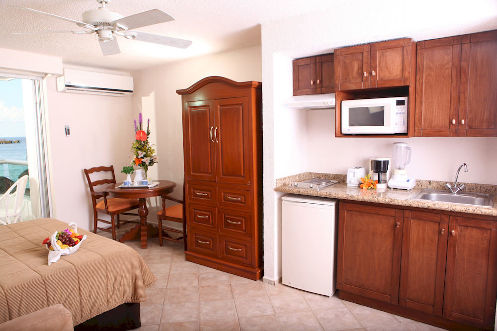 cabinet Kitchen property home cottage cabinetry hardwood cuisine classique counter farmhouse appliance