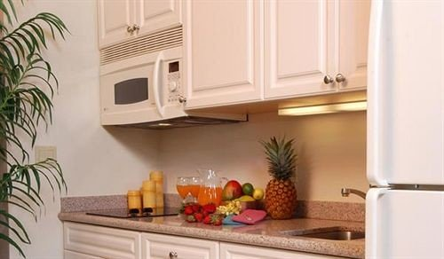 cabinet Kitchen property plant home hardwood cottage countertop living room appliance kitchen appliance