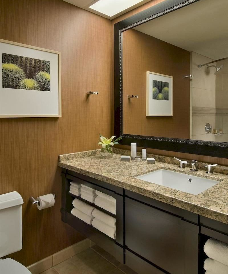 bathroom sink mirror property countertop home counter Kitchen double cabinetry cottage towel tile clean tan