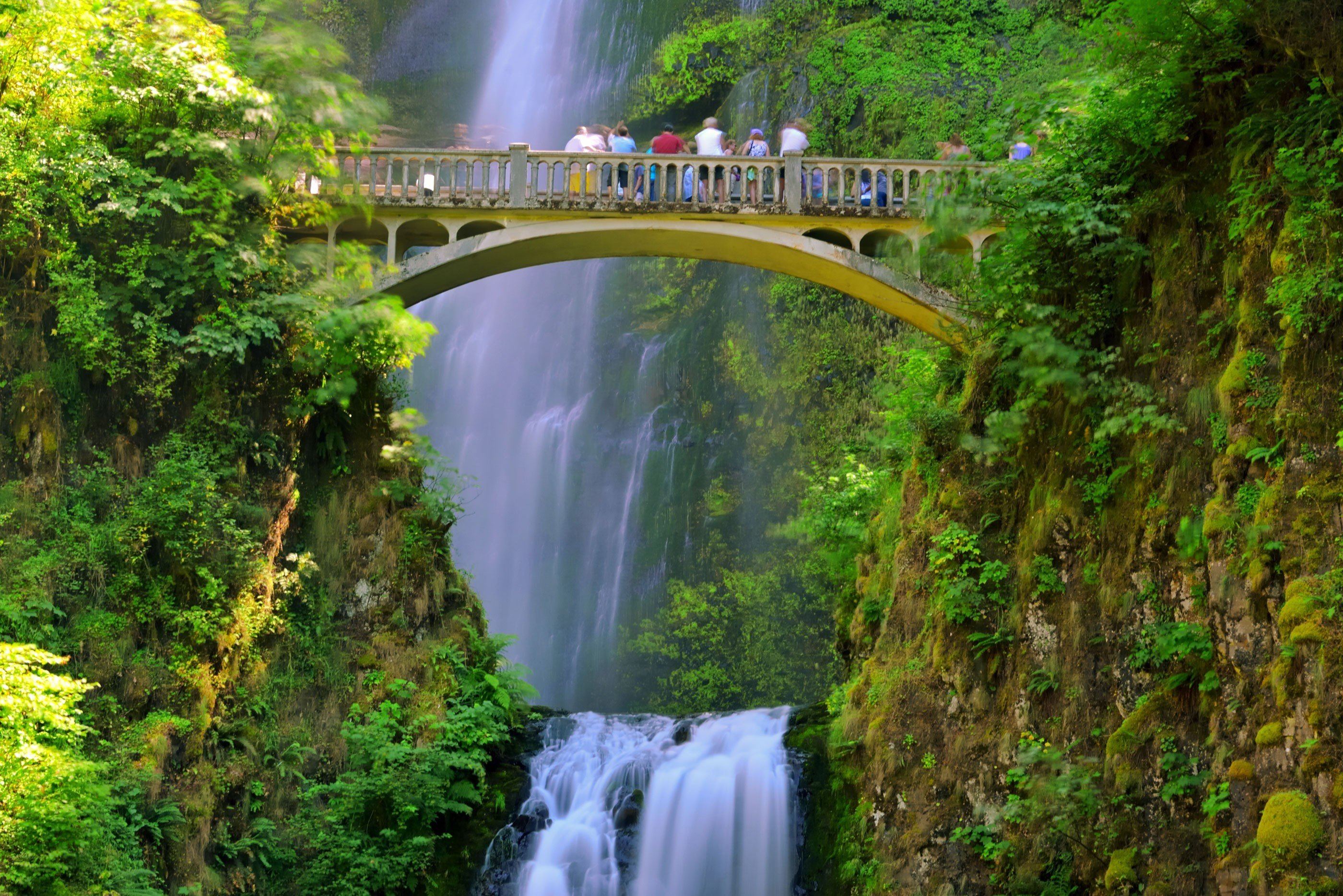 Trip Ideas Weekend Getaways tree Nature outdoor Waterfall water body of water watercourse water feature Forest River rainforest bridge reflection wasserfall traveling Jungle autumn waterway surrounded wooded