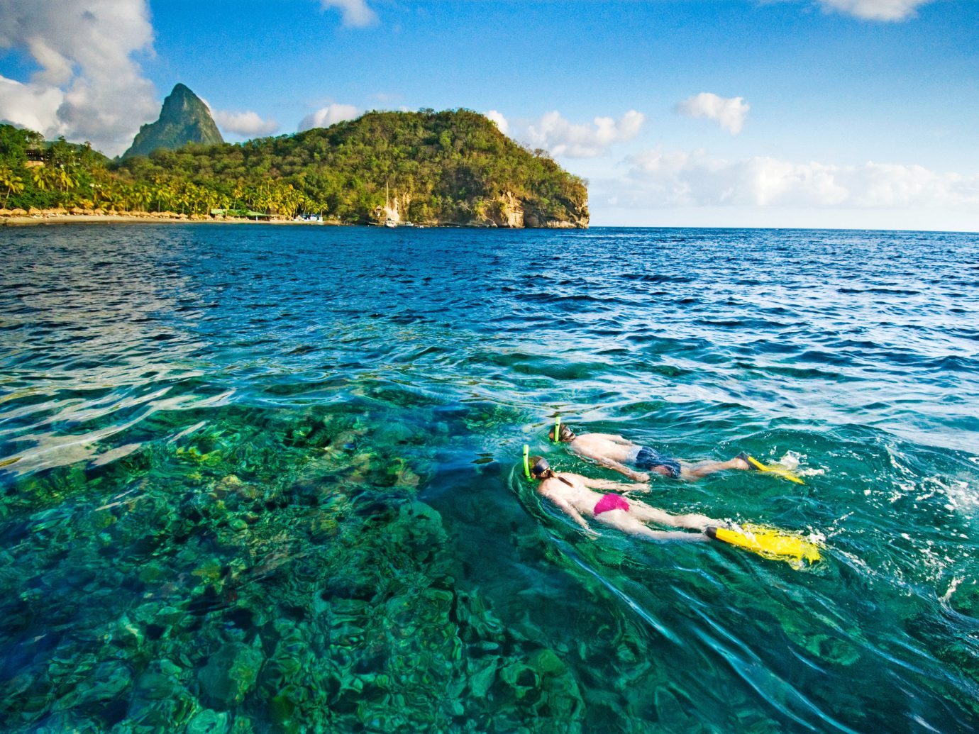 Snorkeling In Saint Lucia