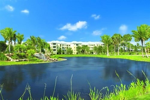 water Nature swimming pool ecosystem Lake pond grass River lawn wetland Lagoon Resort surrounded