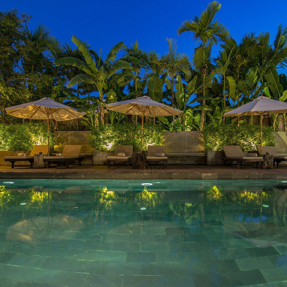 tree sky water swimming pool pond Nature Resort arecales tropics Lagoon mansion backyard Lake