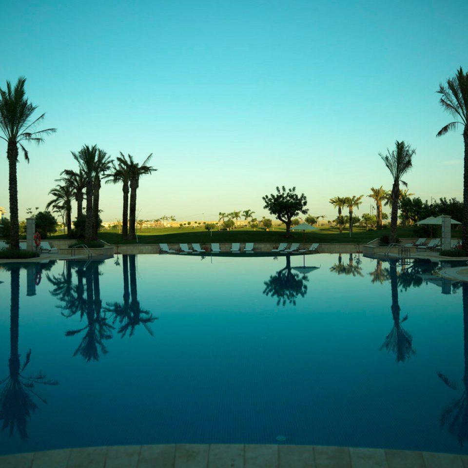 tree sky water swimming pool Sea Resort morning Ocean arecales Lagoon evening dusk Lake marina plant palm
