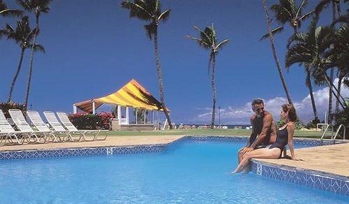 Lounge Luxury Modern Pool tree water leisure swimming pool caribbean Resort Water park resort town Villa Lagoon swimming palm shore