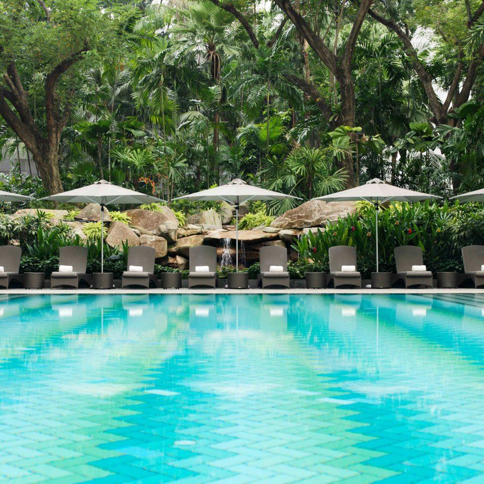 Lounge Luxury Modern Pool tree water Resort swimming pool swimming property water sport leisure resort town Villa backyard condominium eco hotel Lagoon