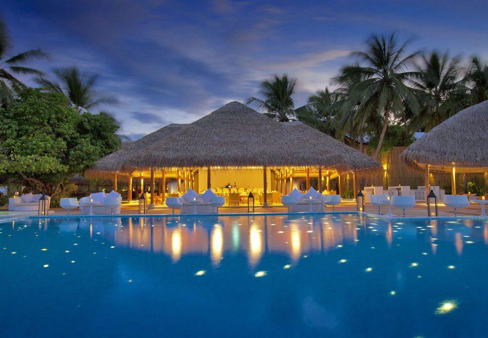 tree swimming pool Resort Nature Lagoon lined