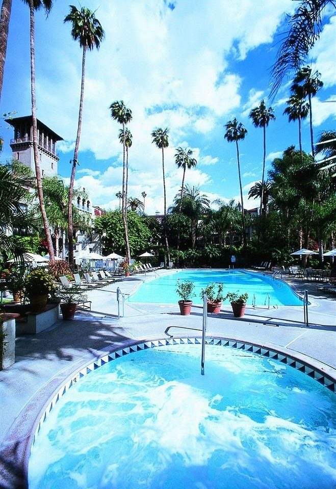 tree sky swimming pool leisure Resort Pool resort town caribbean Lagoon palm