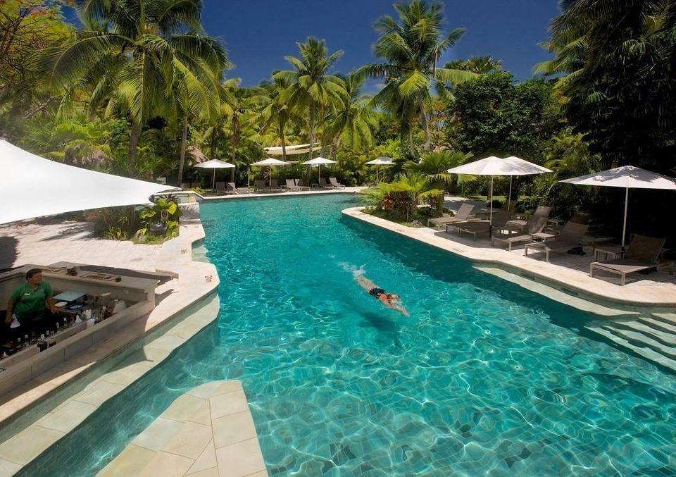 tree swimming pool leisure Resort property Pool caribbean resort town Lagoon Water park Villa swimming surrounded