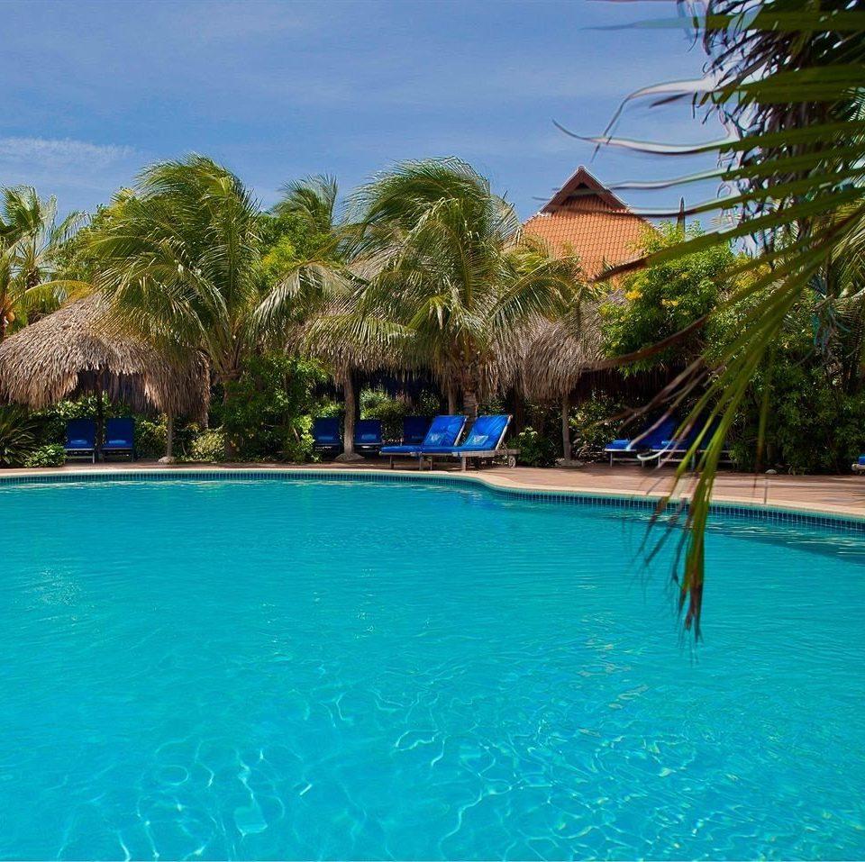 tree water Pool swimming pool property leisure water sport Resort swimming Lagoon resort town blue caribbean Villa surrounded