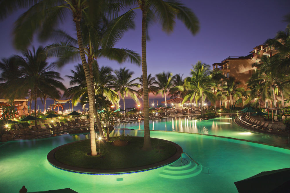 tree swimming pool Resort palm arecales caribbean Lagoon tropics plant