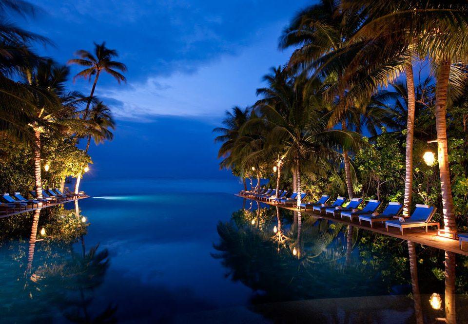 tree water light night arecales plant evening tropics palm Resort Sea sunlight dusk palm family Lagoon blue