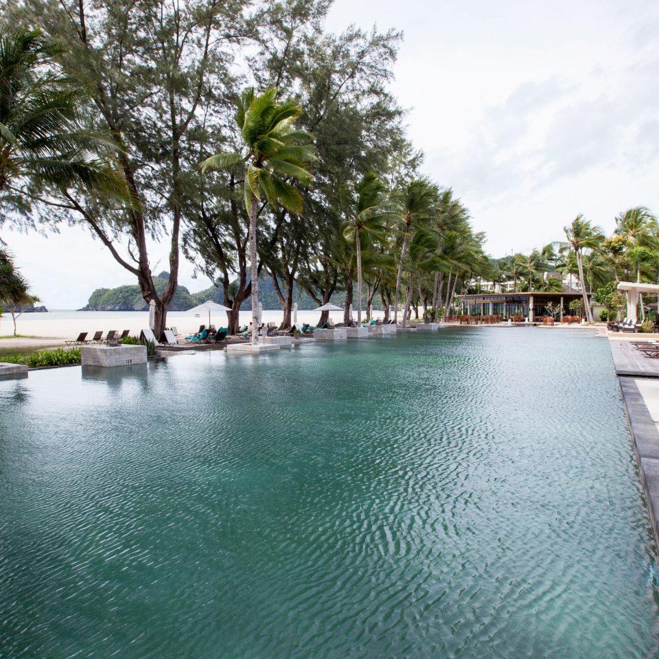 tree sky water swimming pool property Resort reflecting pool marina dock Lagoon condominium waterway Villa lined surrounded