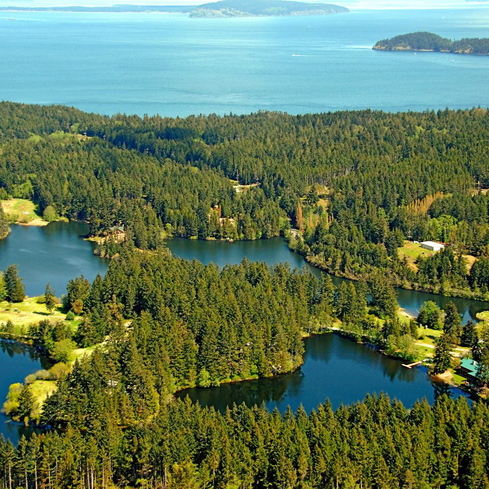 Lake Lodge Outdoor Activities Resort Rustic Scenic views tree water mountain habitat Nature grazing wilderness ecosystem aerial photography River green overlooking hillside woody plant leaf hill landscape lush loch reservoir flower rural area wetland meadow autumn pond pasture highland