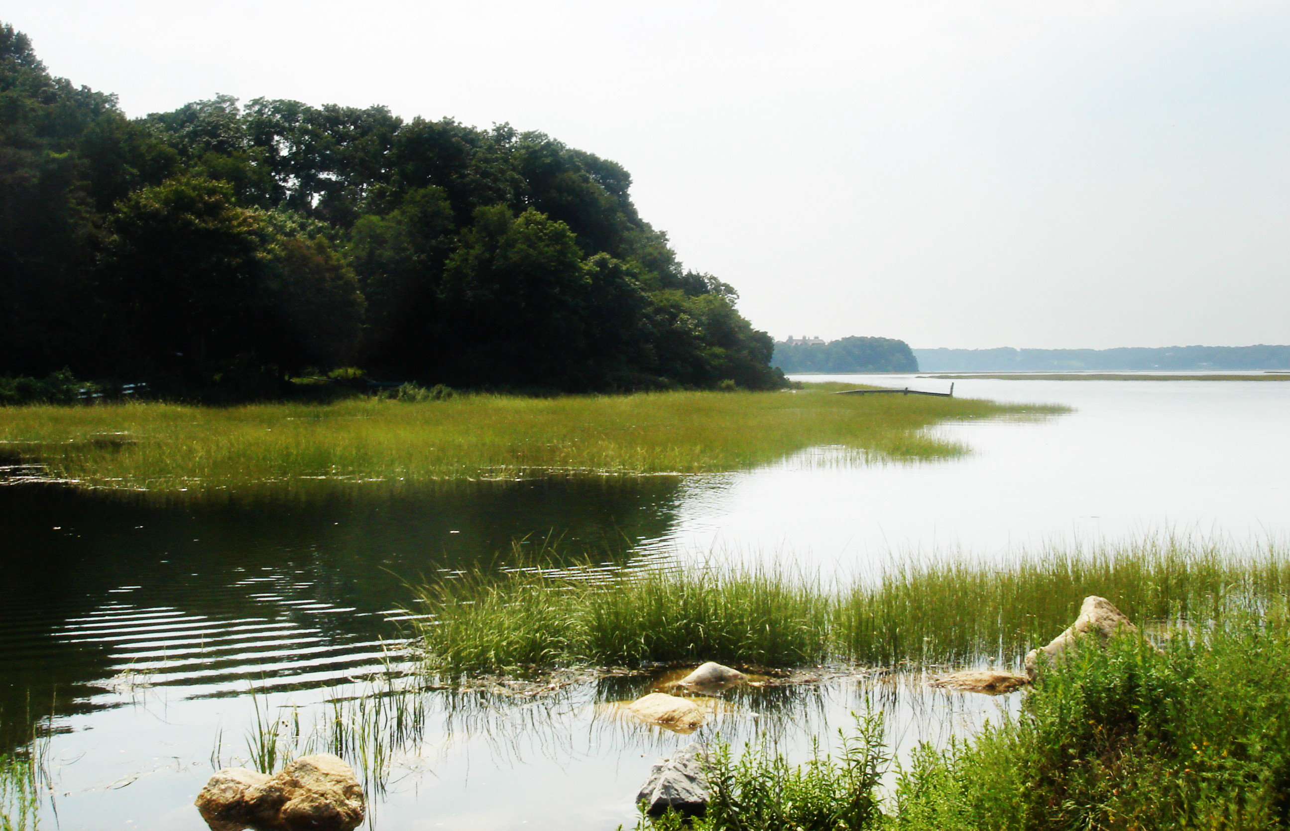 Natural wonders Nature Outdoor Activities Outdoors Waterfront water sky grass habitat Lake River natural environment shore loch reservoir pond wetland marsh surrounded