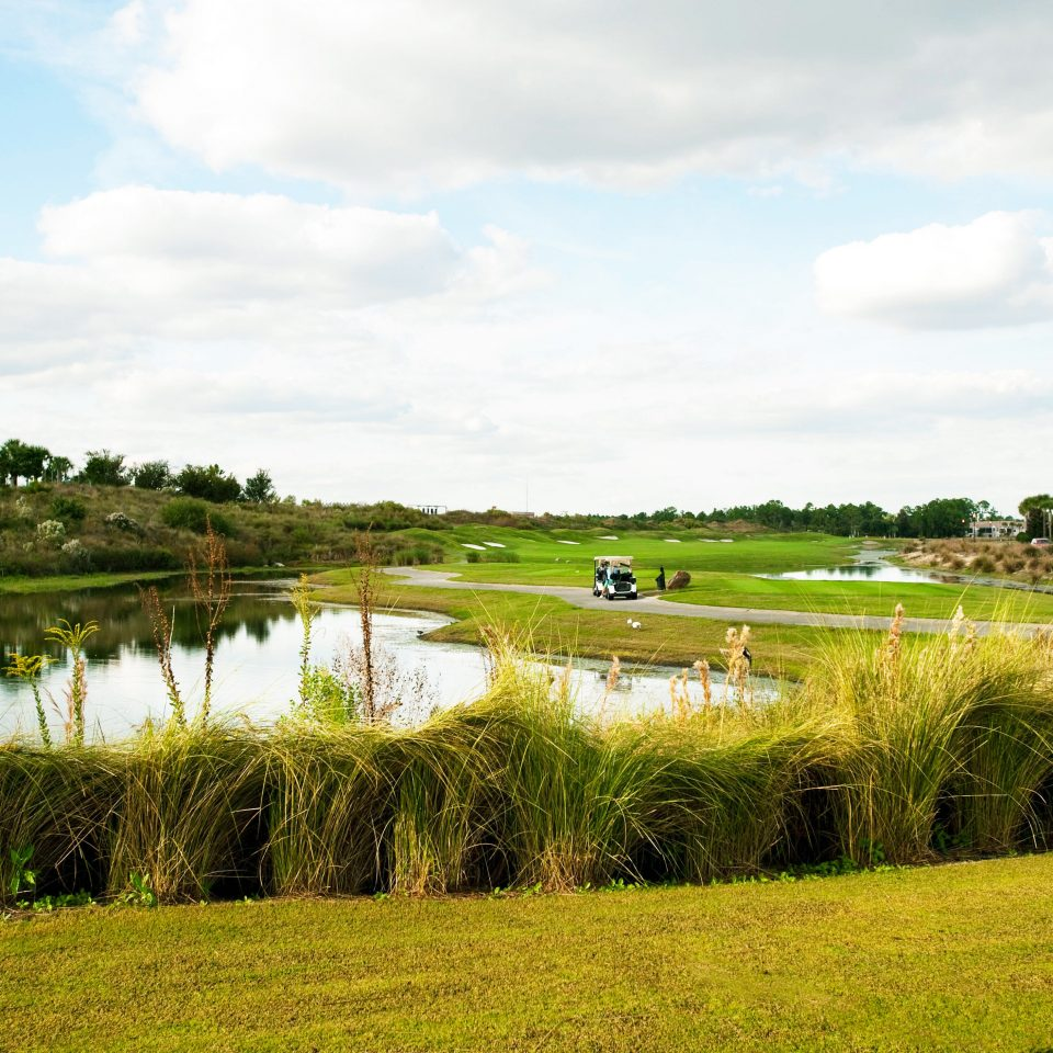 grass sky habitat Nature structure field tree grassland natural environment wetland sport venue paddy field marsh rural area hill River agriculture landscape meadow golf course reservoir green waterway pond Lake grassy golf club plant lush pasture day land