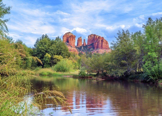 tree water Nature River wilderness ecosystem Lake landscape mountain park pond surrounded flower autumn wooded
