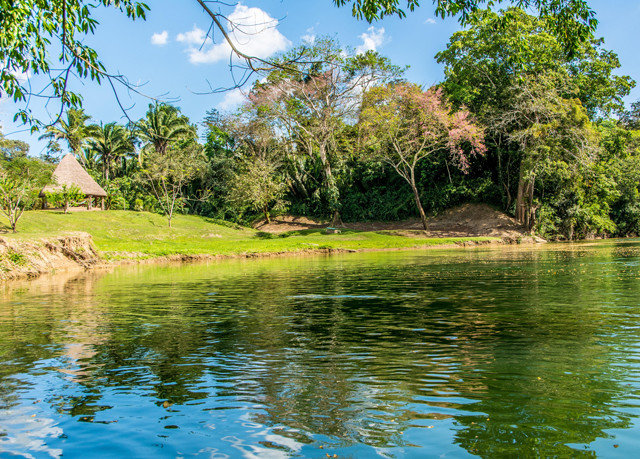 tree sky water Nature ecosystem pond Lake River fish pond reservoir surrounded wooded