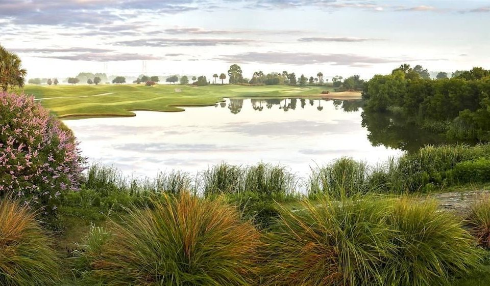 tree water grass sky habitat River natural environment ecosystem grassland Nature wetland sport venue pond marsh landscape grass family Lake meadow golf course plant surrounded sandy