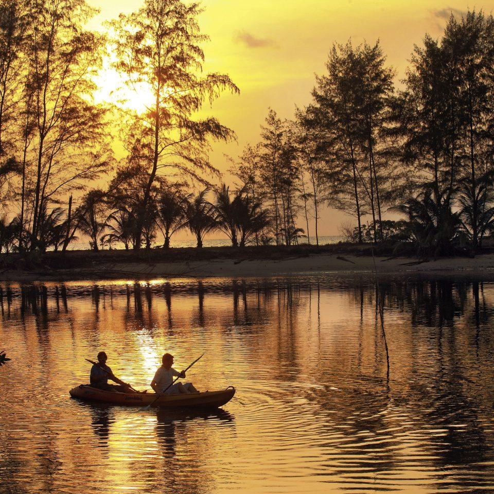 water tree Nature River Lake atmospheric phenomenon morning evening bayou Sunset dusk autumn sunlight dawn surrounded