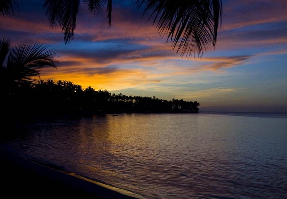 water sky Sunset horizon sunrise cloud dawn Sea dusk evening Ocean morning tree afterglow sunlight Lake palm shore plant distance