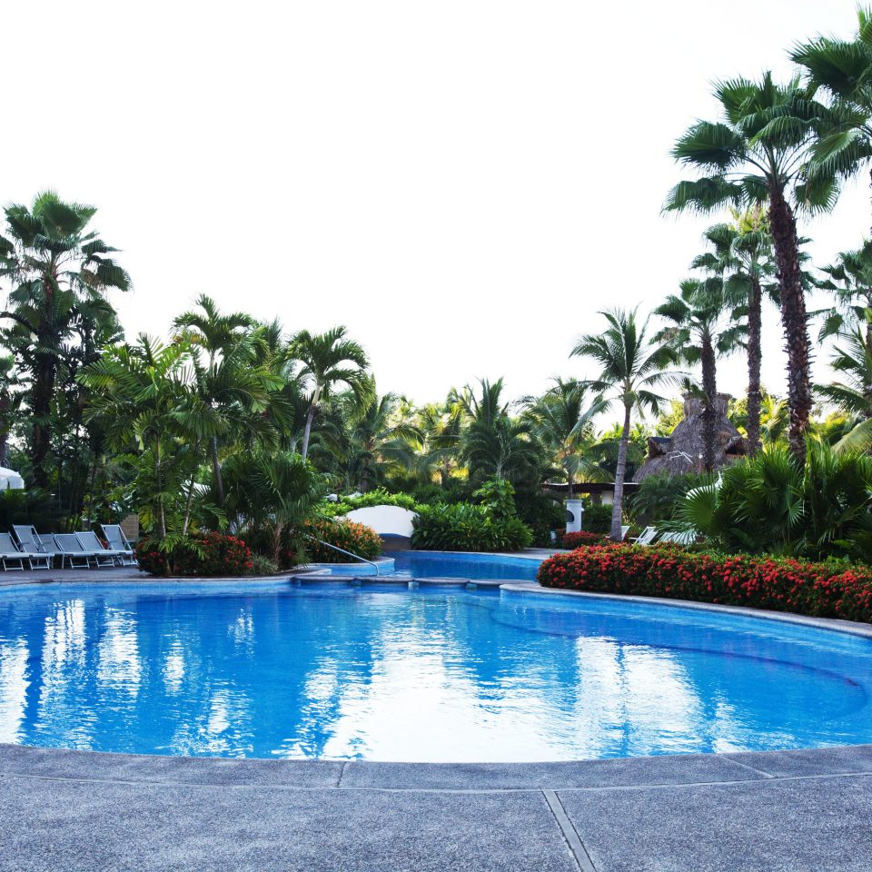tree sky water Pool swimming pool property Resort leisure swimming reflecting pool Villa resort town Lake condominium backyard blue palm lined