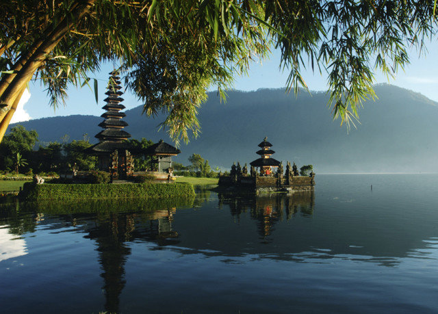 tree water plant Lake morning arecales palm Resort