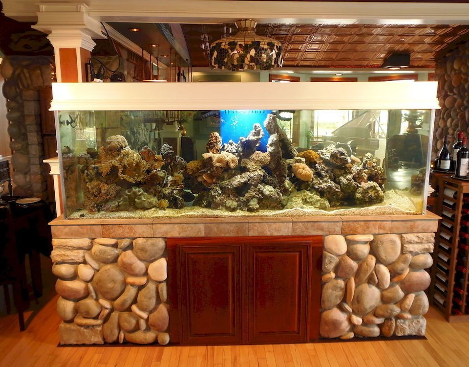 display window tourist attraction retail Lobby aquarium counter living room museum