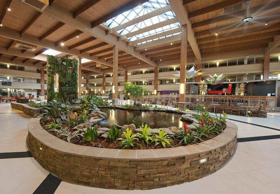 Lobby retail building shopping mall floristry plaza convention center plant roof
