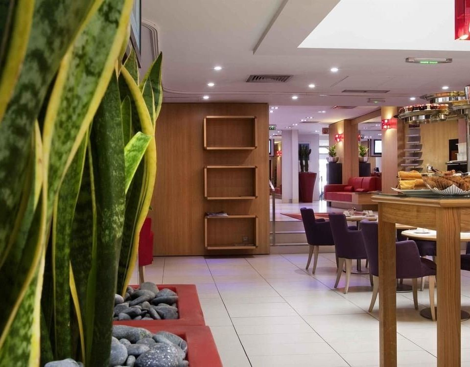 property Lobby home condominium restaurant plant