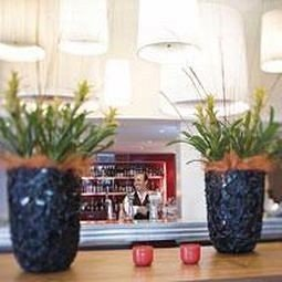 plant property living room home floristry flooring Lobby restaurant