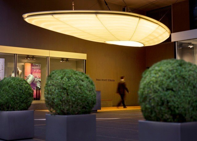 green Lobby lighting shape plant fresh