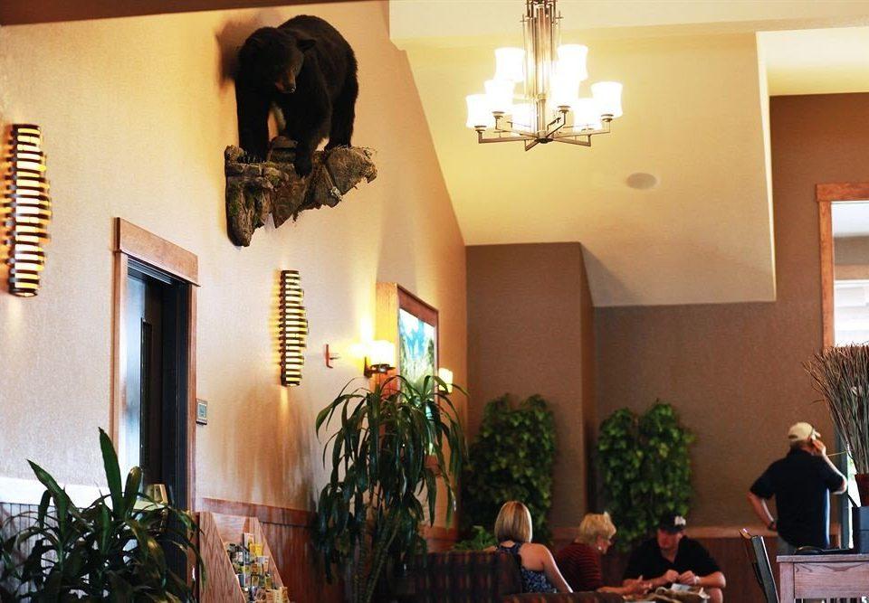 property home plant restaurant Lobby hacienda