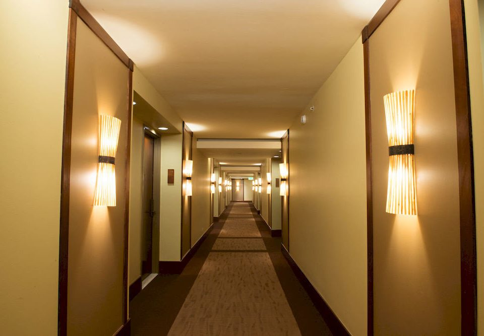 property light hall lighting home Lobby
