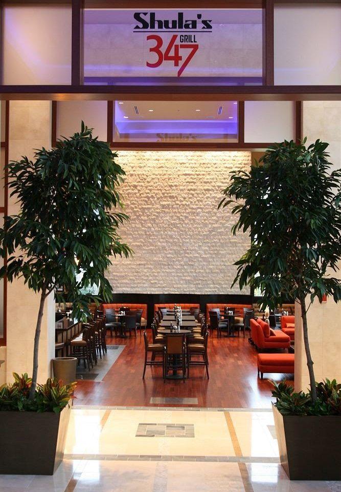 tree plant restaurant home Lobby palm