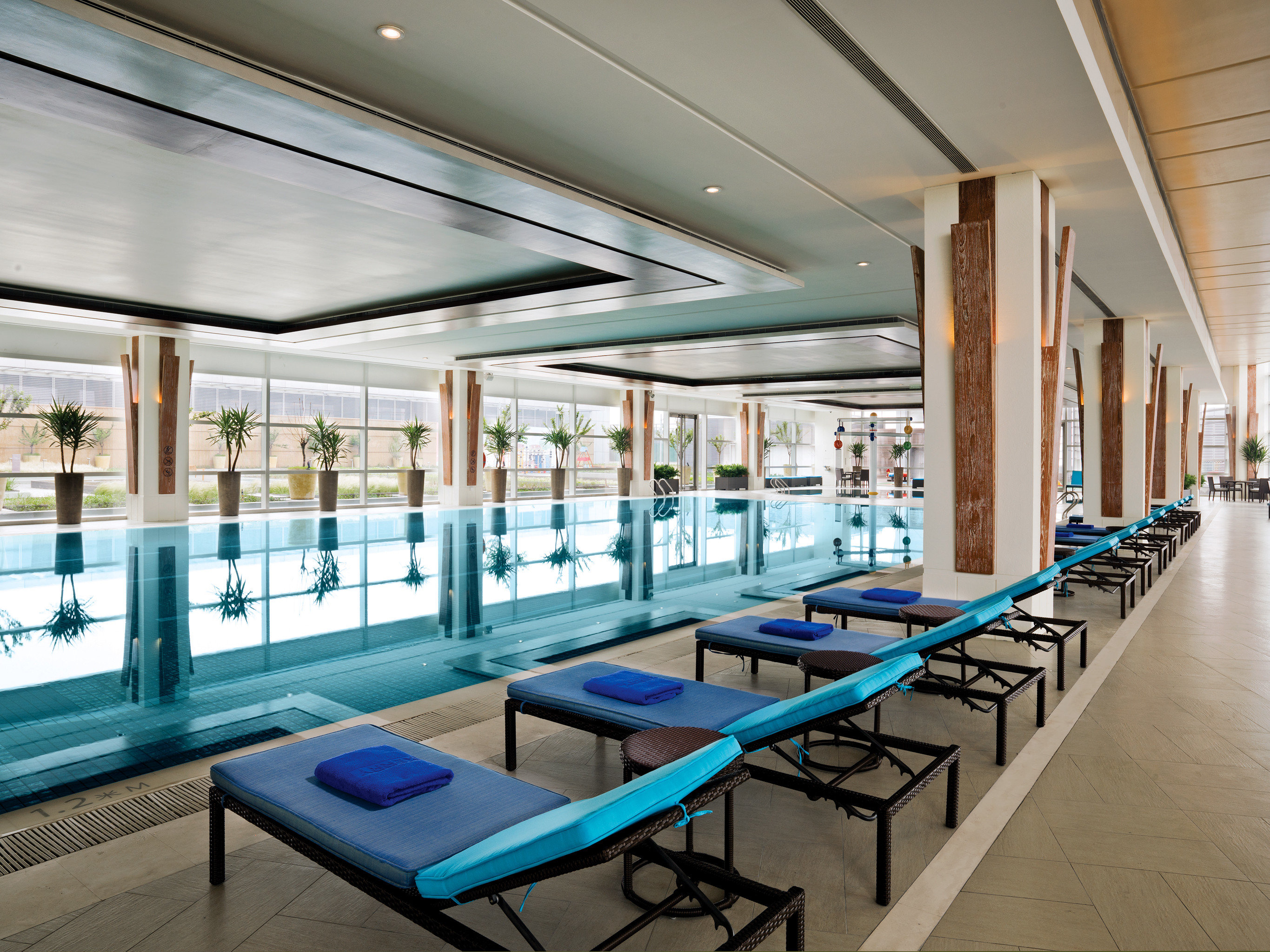 Lounge Luxury Modern Pool leisure centre swimming pool headquarters convention center condominium Lobby blue lined