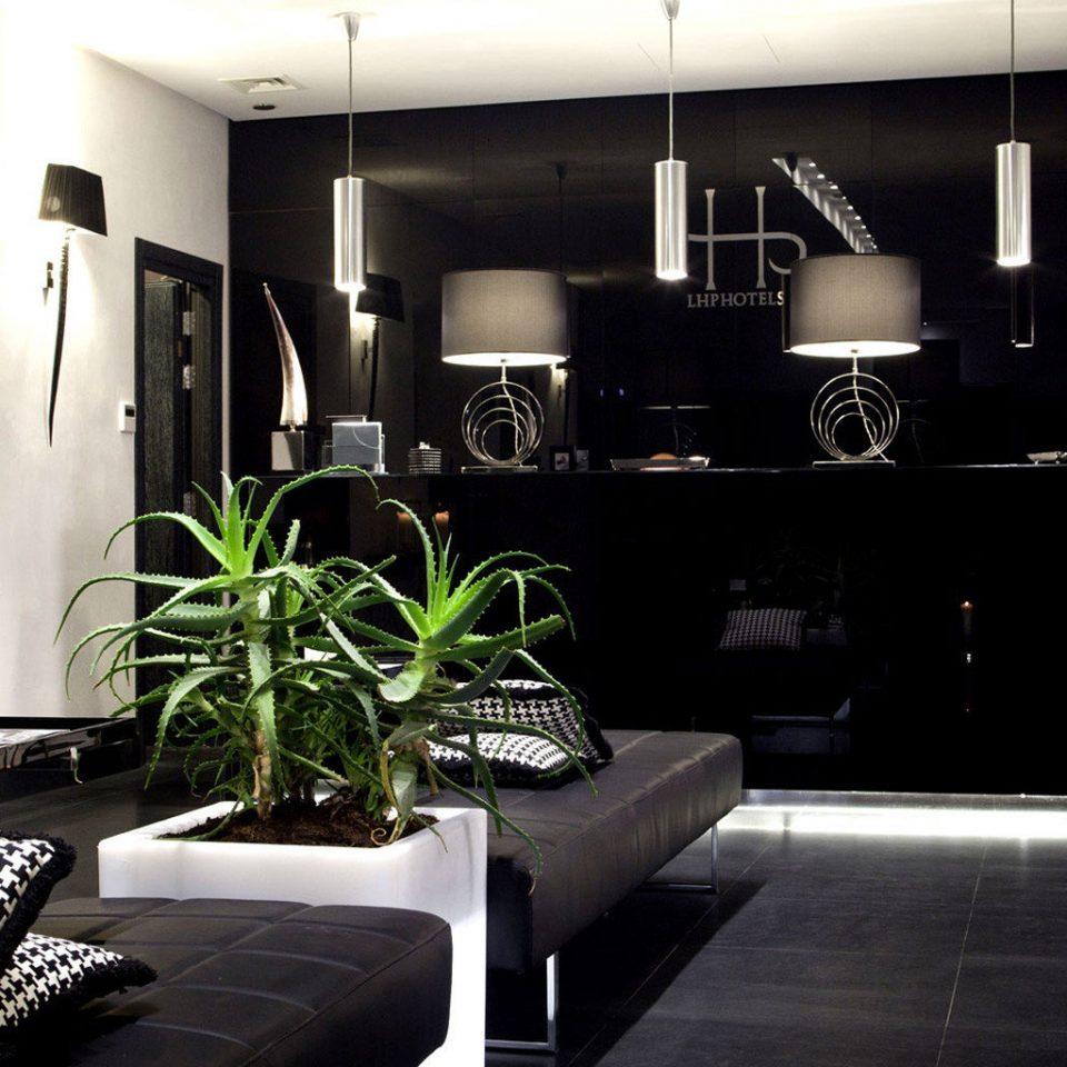 property living room home Lobby lighting condominium Modern leather