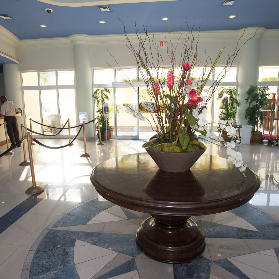 Lobby tourist attraction plant