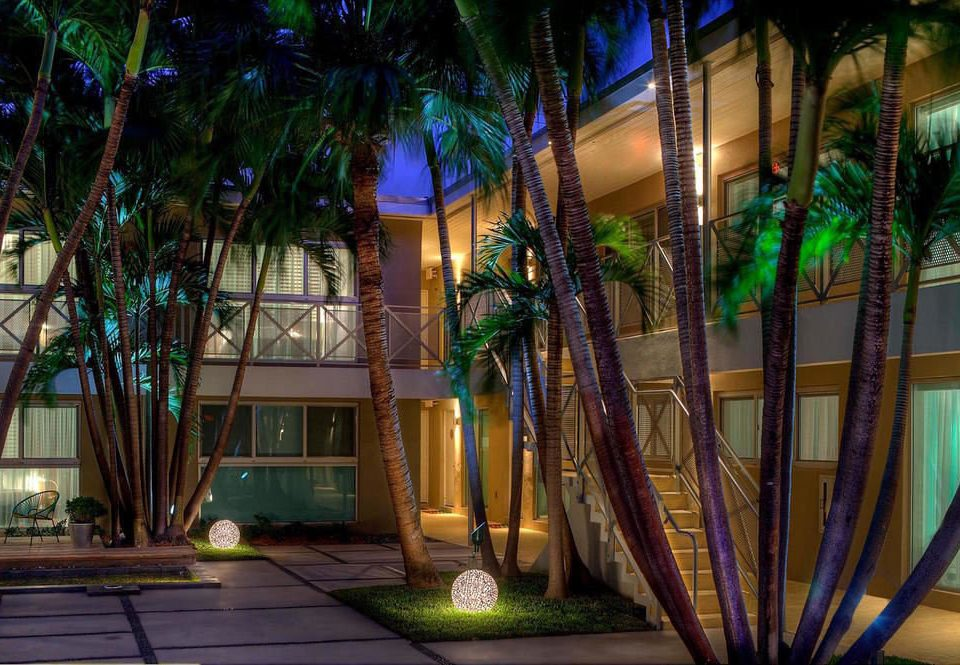 color night Resort lighting plant Lobby restaurant