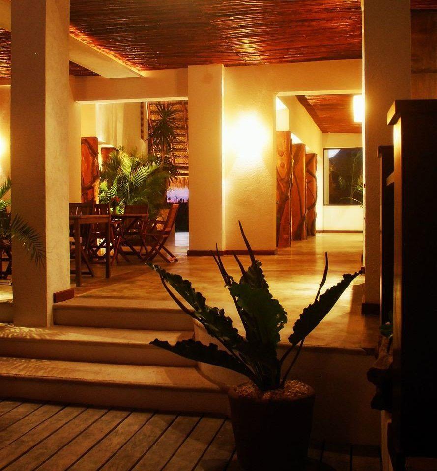 Lobby Sun lighting home living room restaurant plant