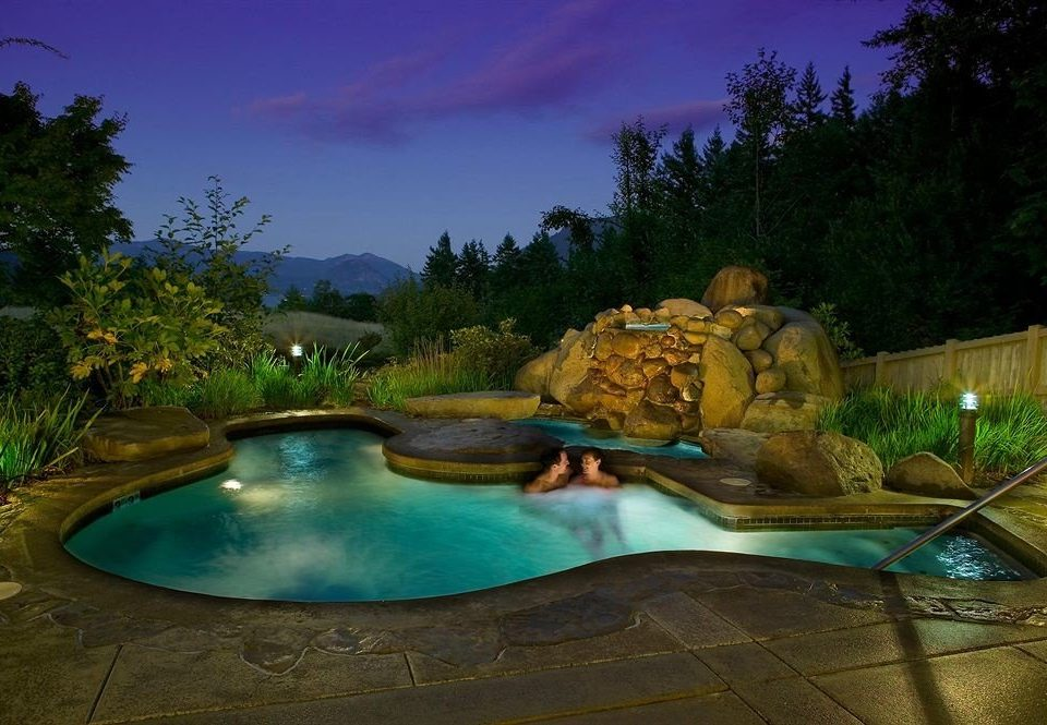 Lodge Pool Resort tree swimming pool backyard landscape lighting pond water feature blue