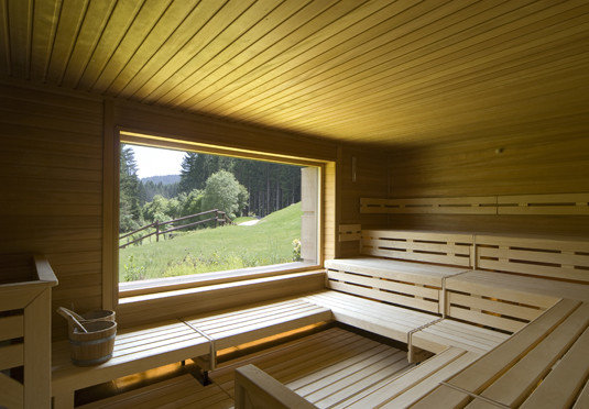 wooden swimming pool log cabin